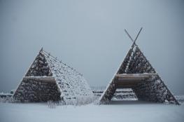 Cod drying racks, Svolvær, Lofoten Islands, Norway. January 2013.