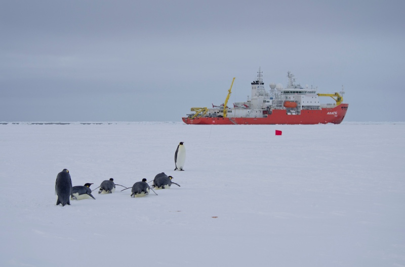 South Korea's RV Araon in Antarctica, February 2012. © Povl Abrahamsen/Flickr.