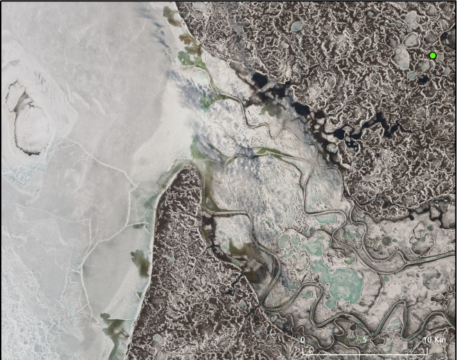 "Landsat 8 image taken over the Yamal Peninsula, Russian Federation. June 10, 2013. The green dot is the supposed site of the ""Siberian crater,"" which appeared in September 2013. NASA/USGS."