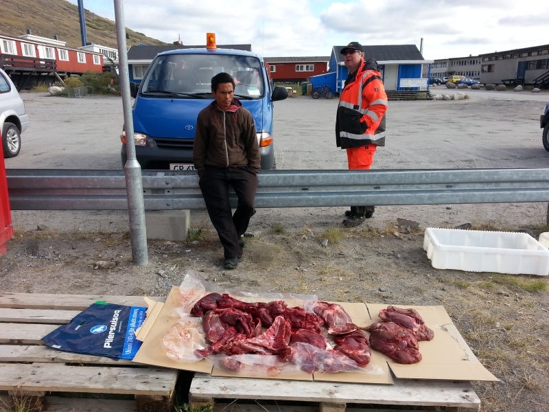 Caribou meat for sale outside Pilersuisoq. © Mia Bennett, August 2014.