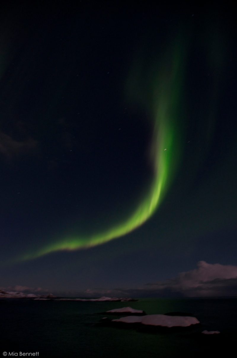 The aurora as viewed from Å, Lofoten, Norway. © Mia Bennett, January 2013.