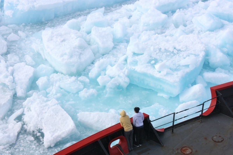 There's oil under them 'bergs... Photo: NASA Goddard Space Flight Center/CC License.