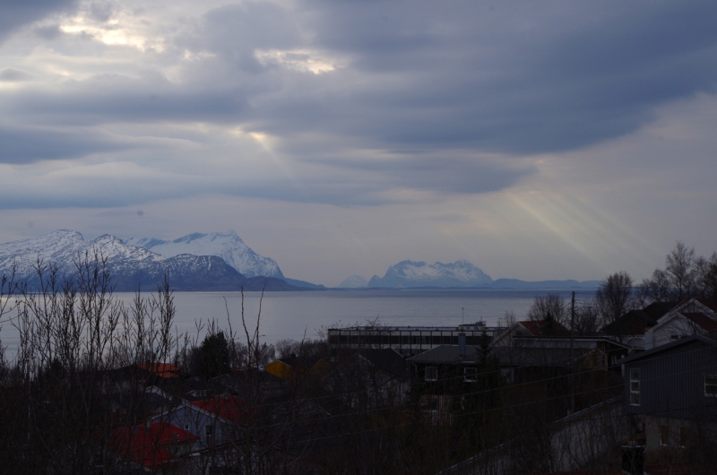 BodoFjord