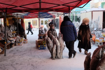 Frozen fish for sale at the market in Yakutsk, Russia.