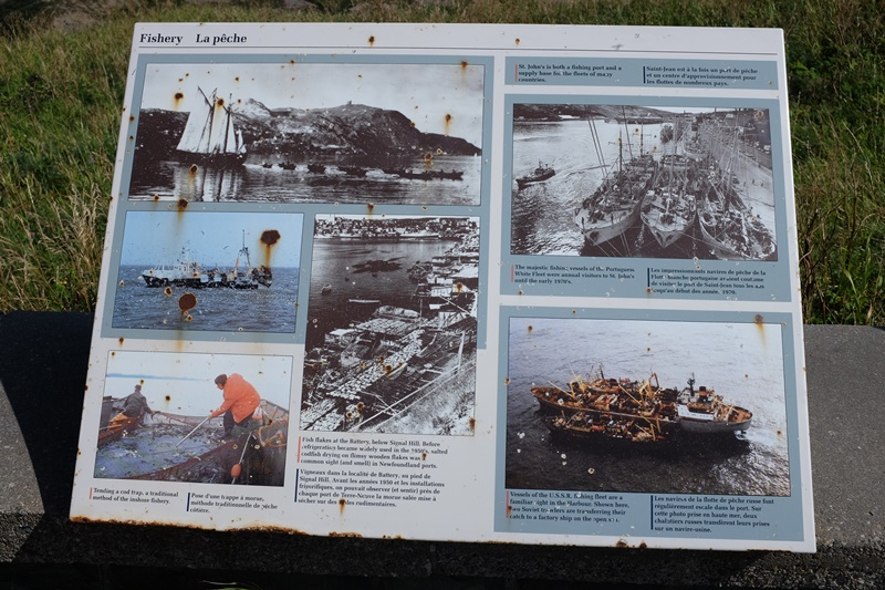 st-johns-newfoundland-cod-fishing-sign-history.JPG