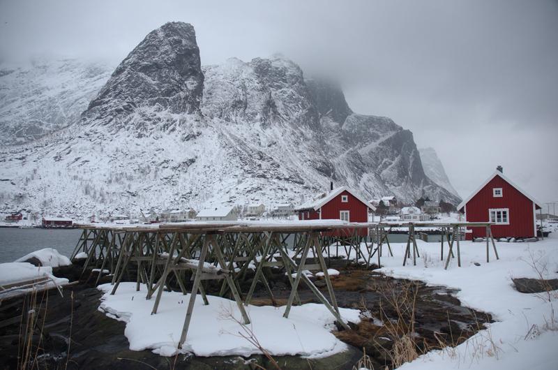 reine_lofoten_arctic