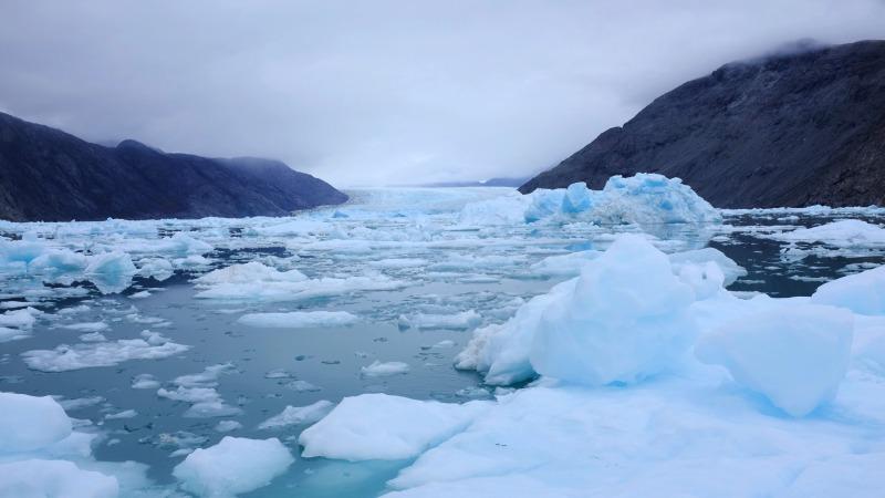icebergs-qooqut-greenland